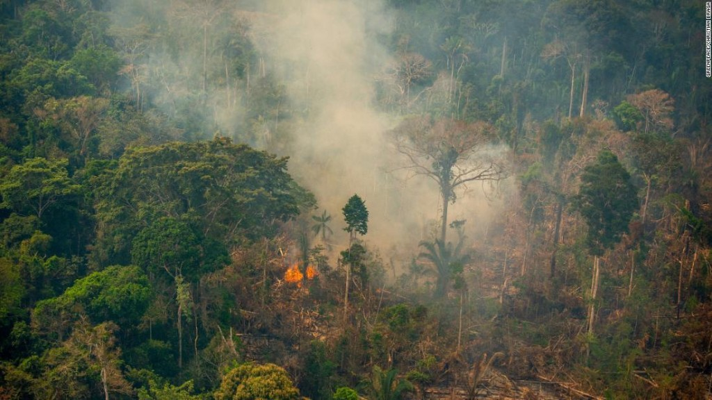 Unchecked fires could turn the Amazon into a savannah
