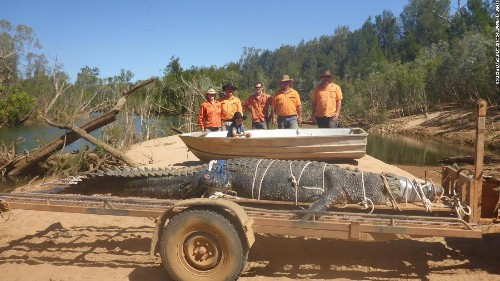 After 8-year search, Australian rangers capture massive crocodile