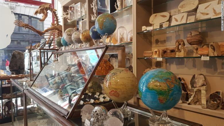 New York's Evolution Store is a museum you can shop in