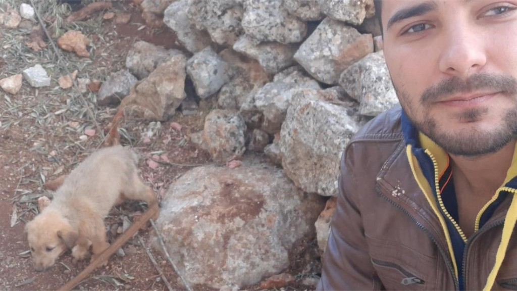Meet Bobe, the other dog at the Baghdadi raid