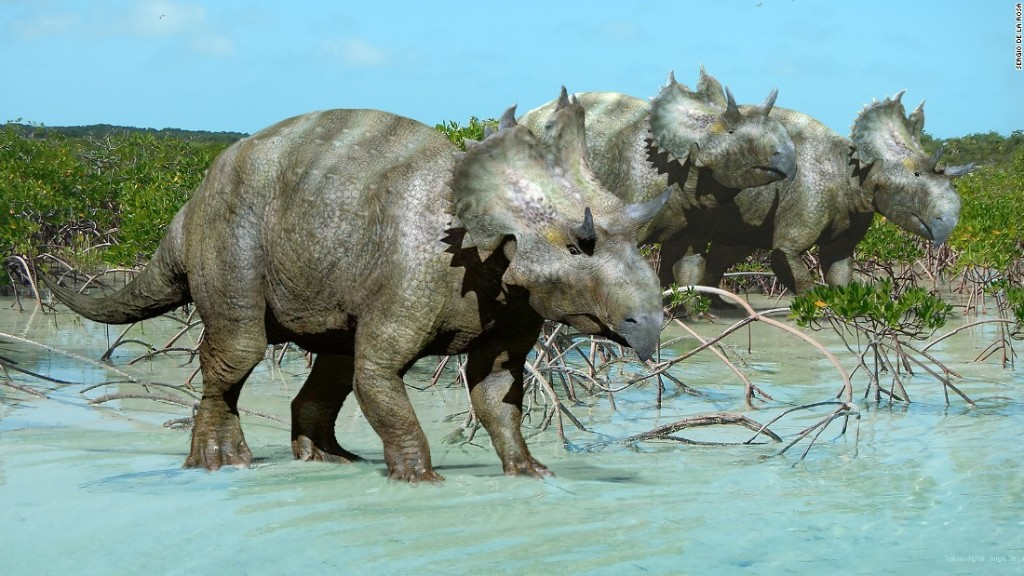 New horned-face dinosaur species found