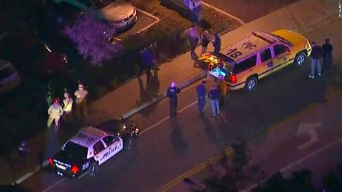 Thousand Oaks bar patrons scrambled in fear as gunman killed 12