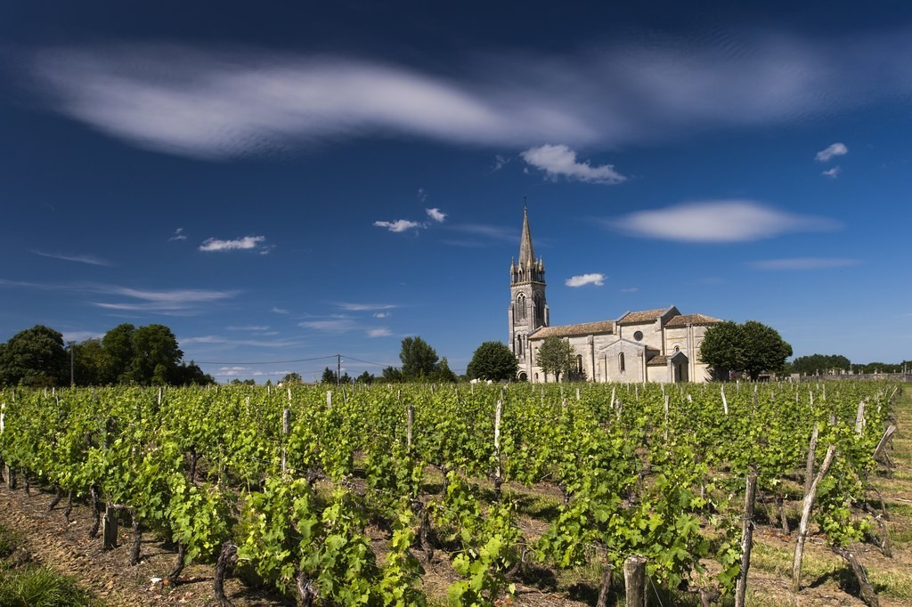 Wine Tourism - cover