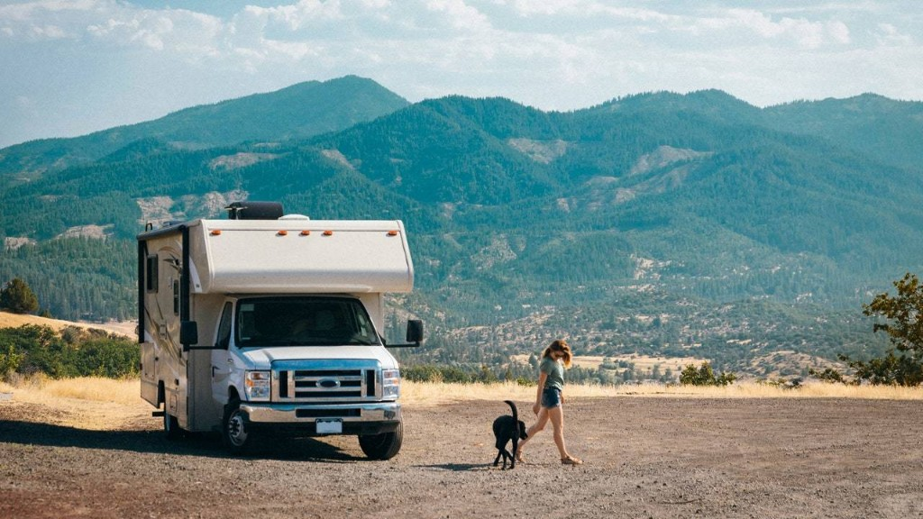 Camping with Dogs: A Beginner's Guide