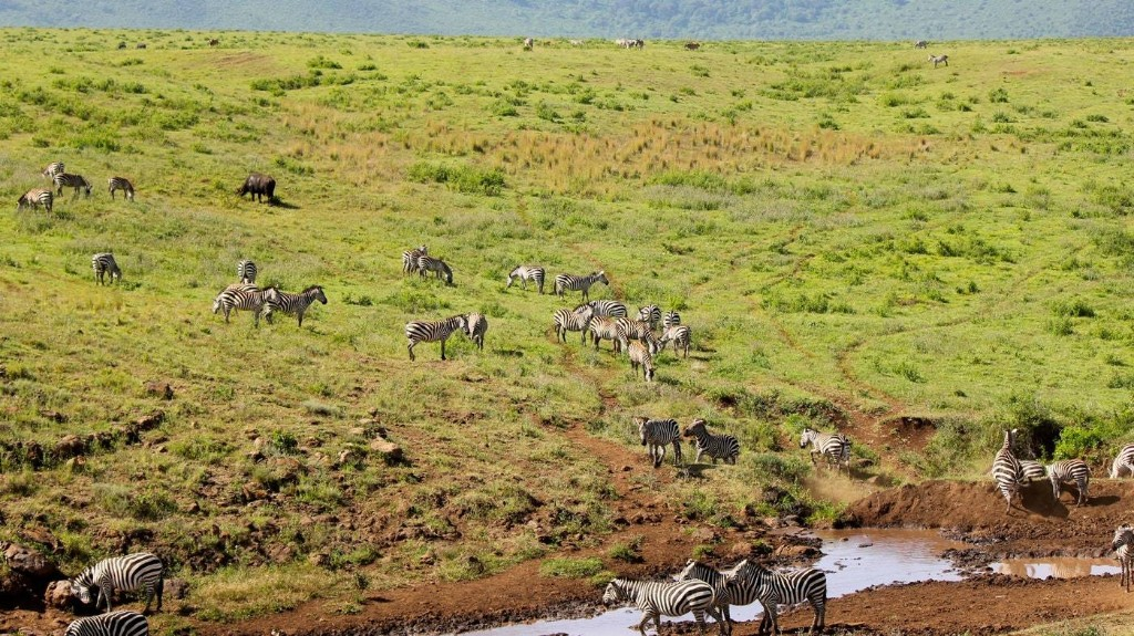 How to Visit Tanzania and Avoid the Crowds