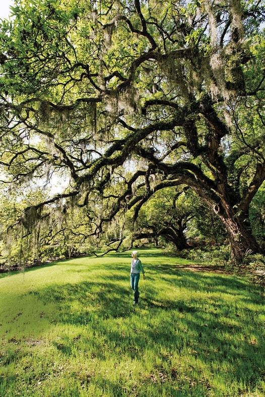 Charleston/ South Carolina  - cover