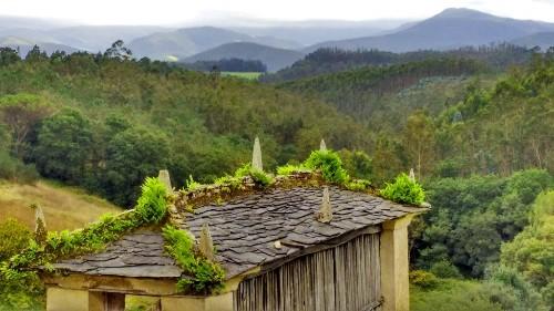 Caminos - Trails - cover
