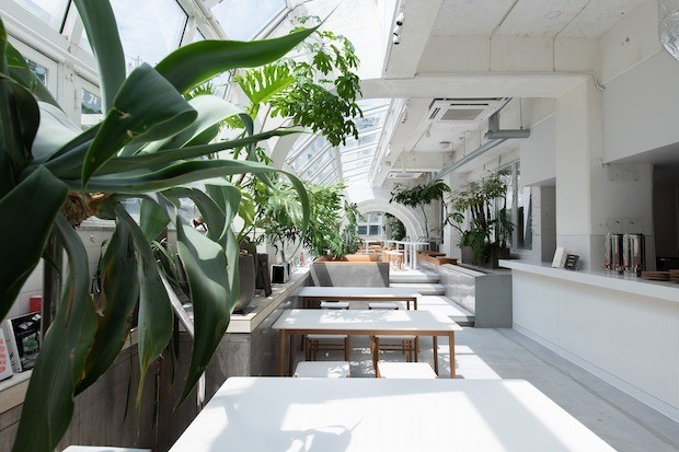 〈KIRO 広島 by THE SHARE HOTELS〉屋内プールをリノベーションしたユニークな複合型ホテル
