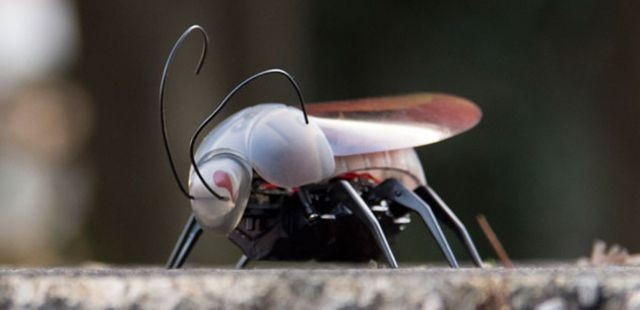 Halloween Special: Enjoy Hours Of Entertainment With This Incredible iOS Insect [Deals]