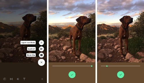 How to pick the perfect frame on iPhone Live Photos