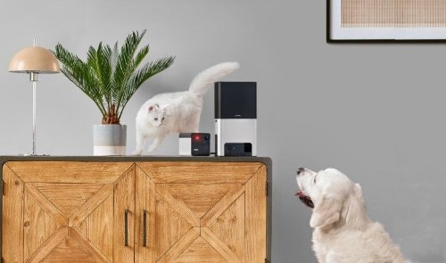 Newest Petcube offers improved pet cam, laser, treat tosser