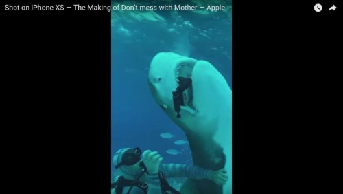 Filmmaker's iPhone XS passes the shark bite test