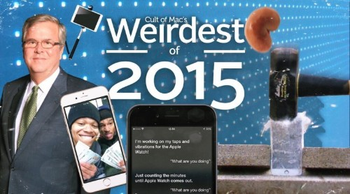 Weirdest of 2015: The year's biggest 'whoops' moments