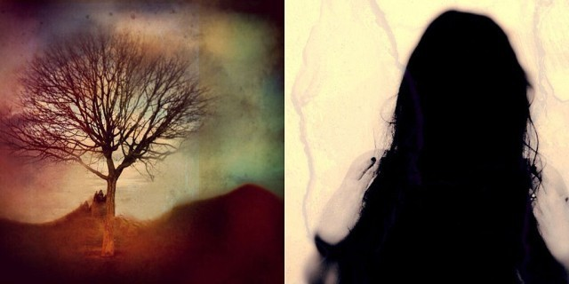 Tangent iPhoneography App Plagued By App Store Fakes