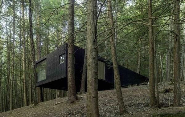 A Dramatic Tree House by Budget-Conscious DIY Builders
