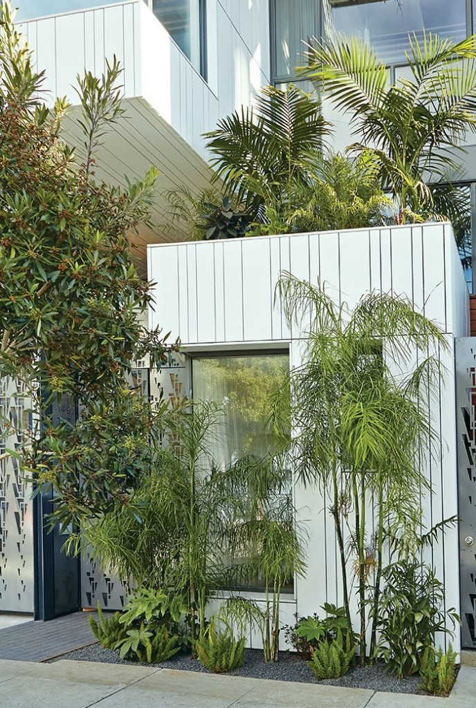 In San Francisco, Green Fences Make Great Neighbors