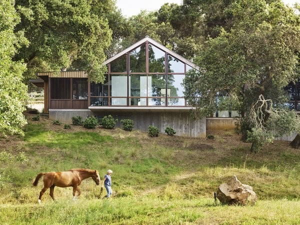 This Breathtaking Ranch Home Was Constructed Without Felling a Single Tree