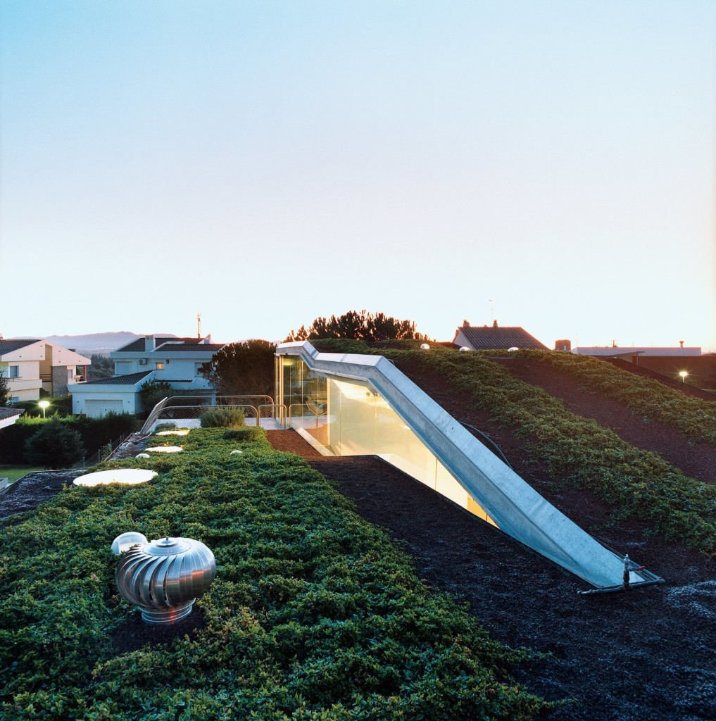 The Costs and Benefits of Green Roofs