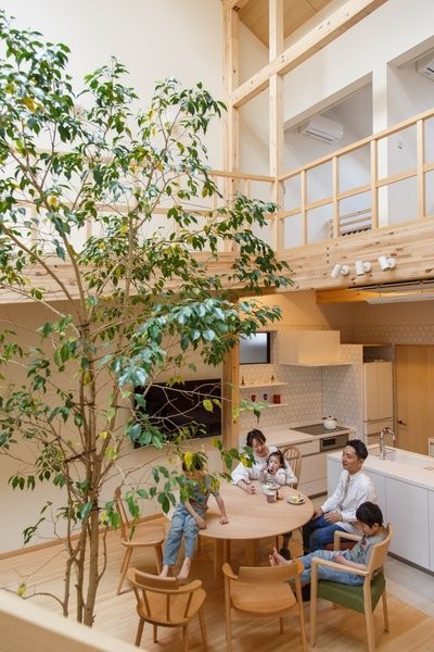 A Ficus Tree Grows Through This Sun-Soaked House in Kyoto