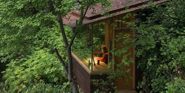 An Architect and His Preteen Daughter Built This Tiny Backyard Retreat Together