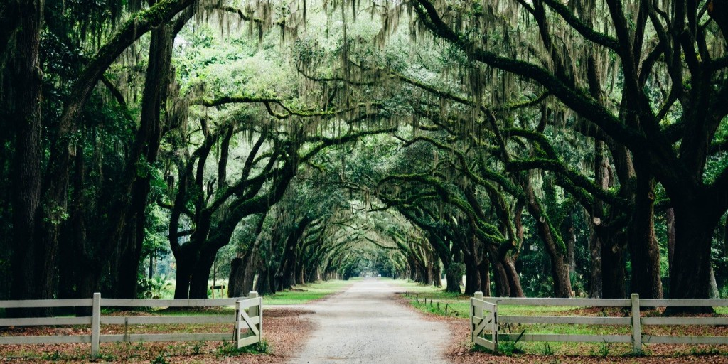 Savannah, Georgia, commits to 100% green energy by 2050 - Electrek