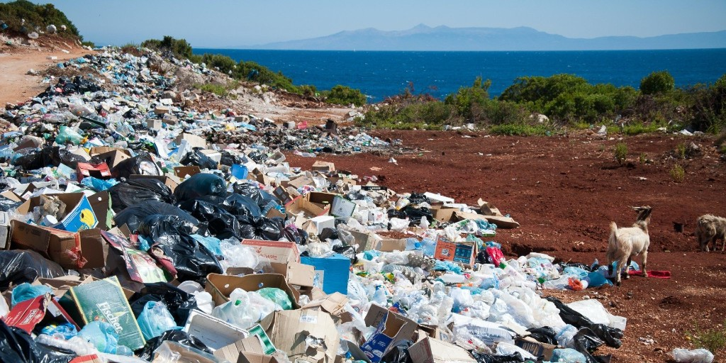 Climate Crisis Weekly: Plastic Free July — here's how to do it - Electrek