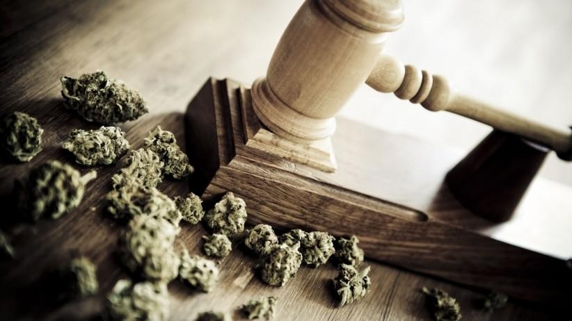Cannabis Bits - Magazine cover