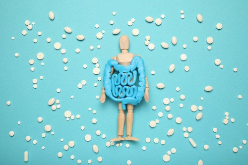 Why Gut Health Is Mental Health