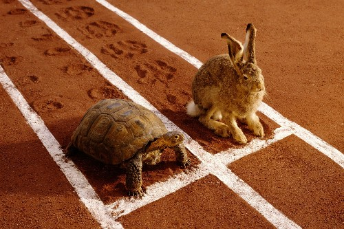 Slow Down! Why Starting Slow Is the Right Speed for Business Success