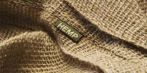 Hemp Is the Multibillion-Dollar Cannabis Opportunity Few Have Heard About