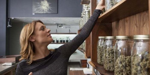 4 Cannabis Business Ideas from the Frontier of the Legal Weed Industry