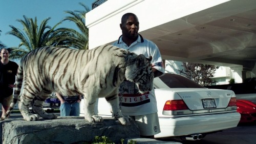 Boxing's 'Tiger King,' Mike Tyson, says he was wrong to own tigers