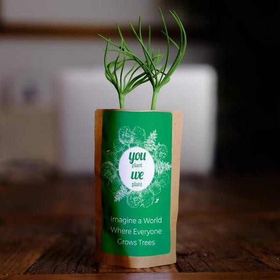 Grow a tree and we'll plant 10 trees
