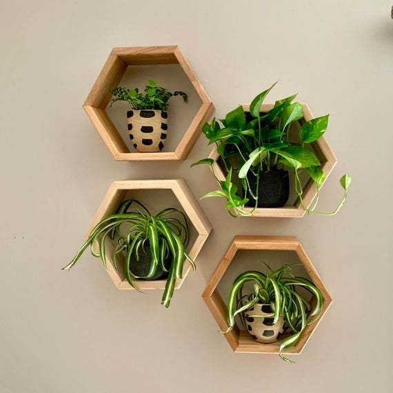 Save $13 on hexagon floating shelves