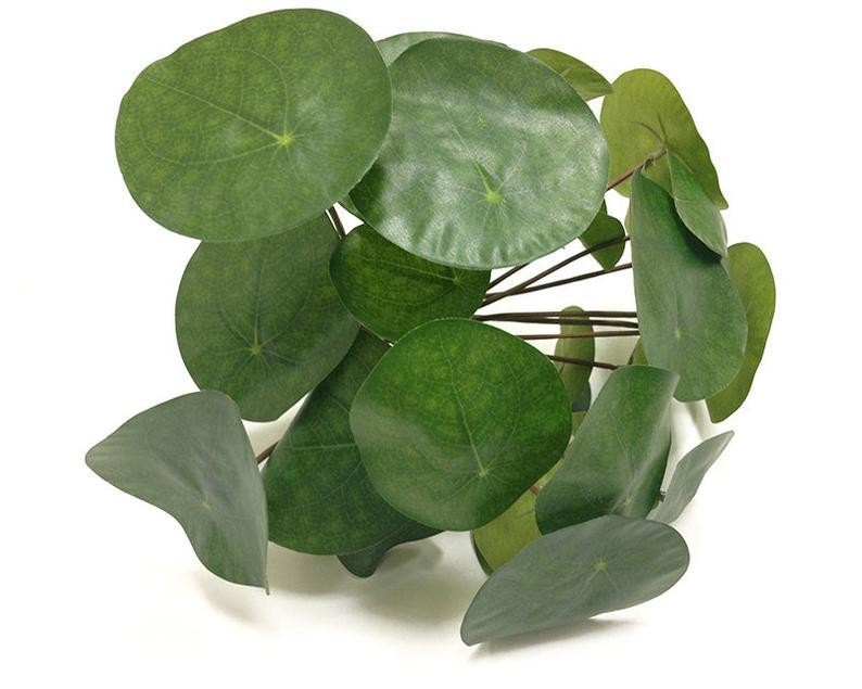 Brighten up your workspace with an artificial Chinese money plant