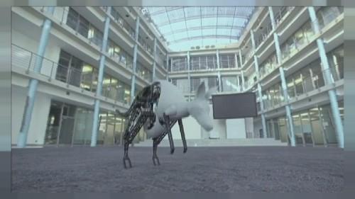 Das bionische Känguru und der Pingpong-Roboter