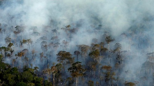 Targeting environmental activists with counterterrorism measures is an abuse of the law ǀ View