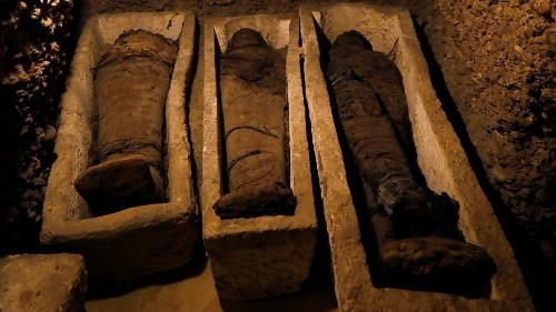 Egyptian archaeologists discover 50 unidentified mummies
