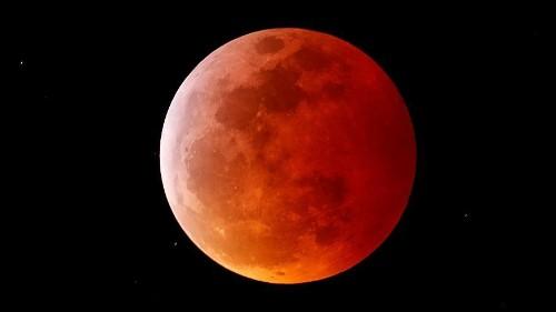 """Sortie de nuit réussie pour la """"Lune de sang"""", née de l'éclipse totale"""