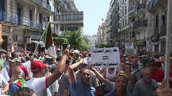 C'est la 25e semaine qu'ils manifestent contre le pouvoir : des milliers d'#Algériens réclament une élection #présidentielle, elle n'a pas eu lieu comme promis le 4 juillet, faute de candidats.