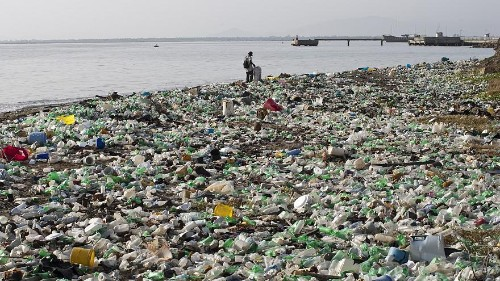 What plastic objects cause the most waste in the sea?