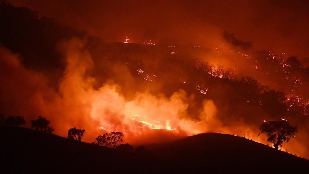 Australia Is Burning - cover