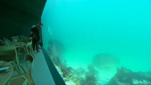 شاهد.. استمتع بوجبات الطعام تحت سطح البحر