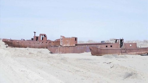 Watch: Students plant trees to save what's left of the Aral Sea