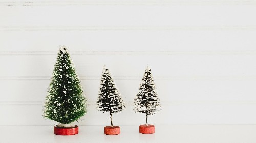 Real vs Fake: How to curb your Christmas tree carbon emissions