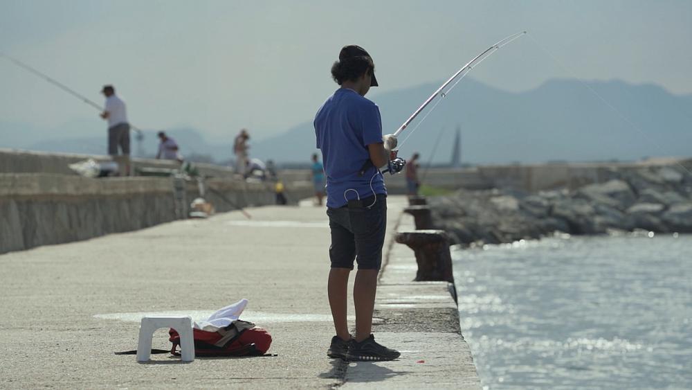 Pêche sportive en Europe : concilier préservation, économie et respect des autres activités