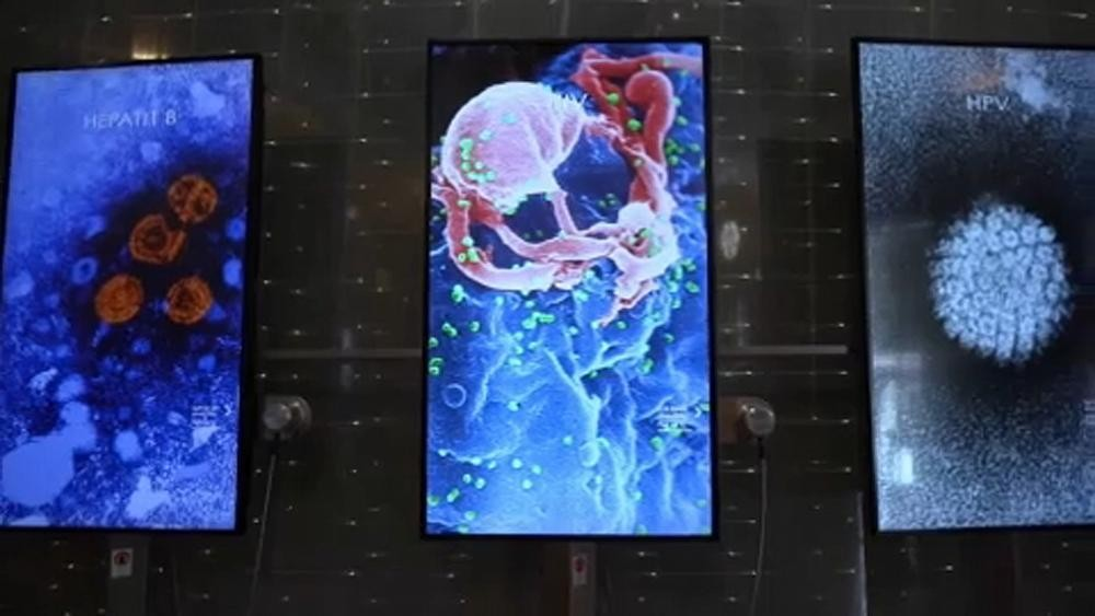 Nobel Prize museum reopens with exhibition about pandemics