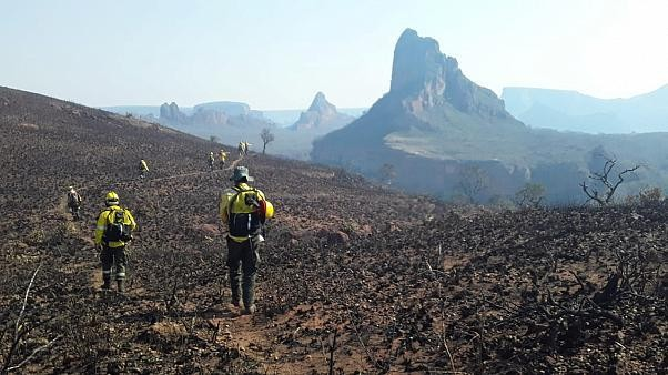 Bolivia, like neighbour Brazil, battles intense wildfires that have so far burnt 500,000 hectares