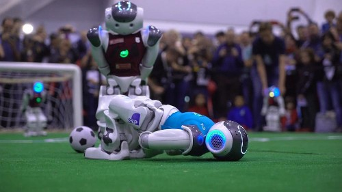 Robots and innovative farming methods to future-proof humanity
