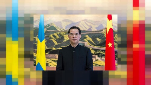 Chinese official in hot water after branding Sweden 'lightweight'
